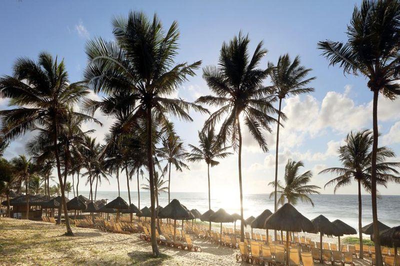Coqueirais com gazebos de palha na praia