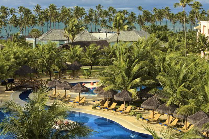 Vista aérea com detalhes dos coqueirais e piscinas com sombra e espreguiçadeiras