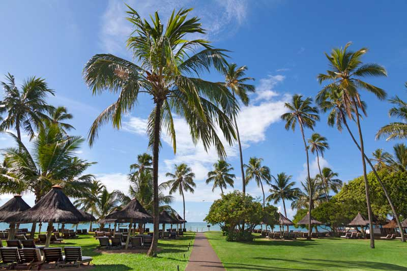 trilhas-praia-coqueirais
